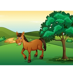 A smiling horse vector image vector image