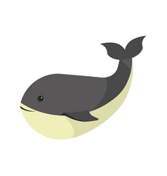 Big black whale with white stomach isolated vector