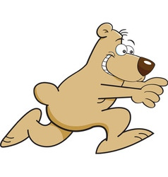 Cartoon running bear vector image vector image