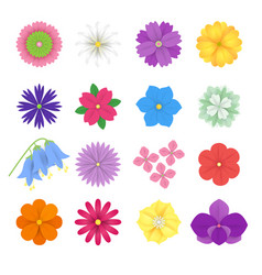 set of colorful paper flowers white background vector image