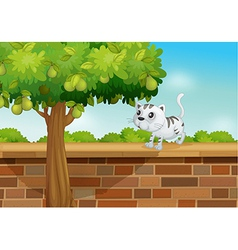 A cat on a wall vector image vector image