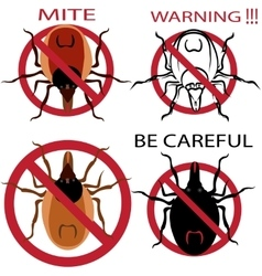 A set of warning sign Spider mites Red mite vector image vector image