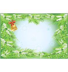 firtree branches background vector image
