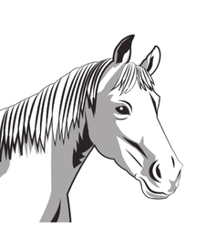 horse drawing icon vector image
