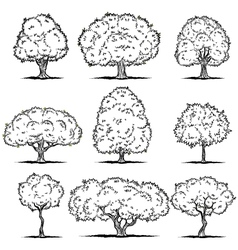 Set of deciduous trees line art vector