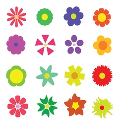 Flower colorful vector