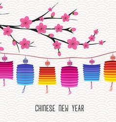 Blossom chinese new year lantern and background vector
