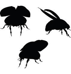 Bug scarab early lift vector