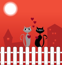 Cats on fence in love vector image