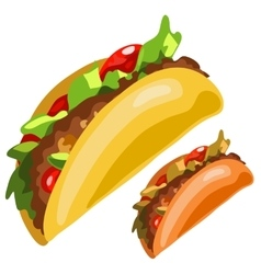 Delicious burrito in cartoon style isolated vector image vector image