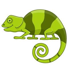 Funny chameleon cartoon vector