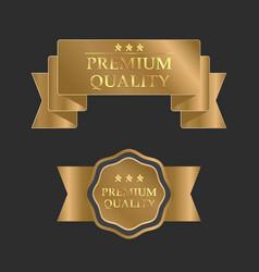 gold premium design template vector image vector image