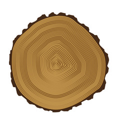 Tree brown rings background and saw cut tree trunk vector