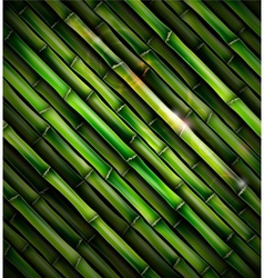 Background with bamboo vector image vector image