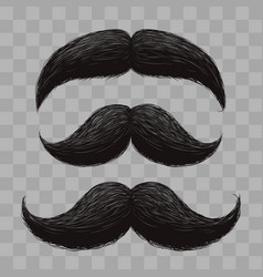 Funny retro hair mustaches isolated vector