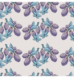 Seamless pattern of blackberry with branch and vector