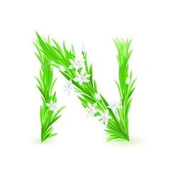spring flowers alphabet n vector image vector image