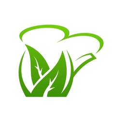 Fresh green herbal teapot vector image vector image