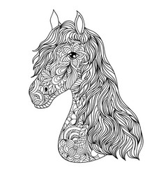 Hand drawn horse on white background vector