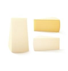 Set of triangular pieces bri cheese vector