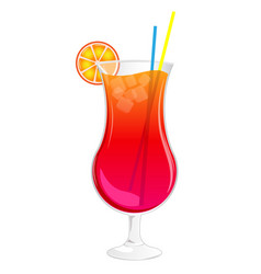 Long summer cocktail in glass with ice orange vector