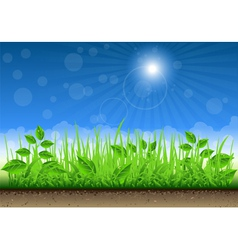 Grass border on clear sky background vector