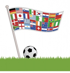 football flags vector image vector image