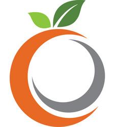Orange logo design vector
