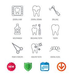 Stomatology tooth and dental crown icons vector