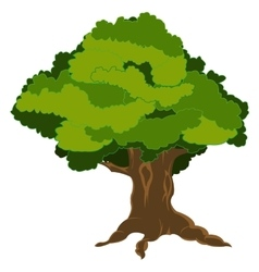 Tree with green foliage vector