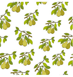 seamless pattern with pears vector image vector image