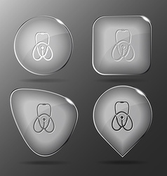 Stethoscope Glass buttons vector image vector image