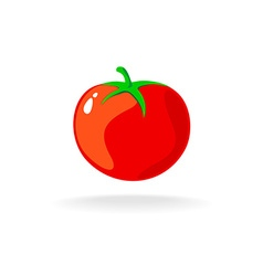 Tomato isolated single simple cartoon vector