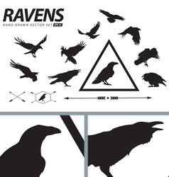 Hand drawn ravens set vector