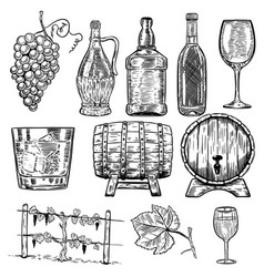 wine set of wine bottles grape glass wood barrels vector image