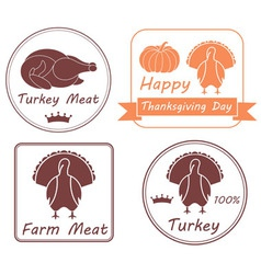 Turkey vector image