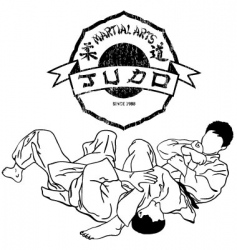 judo vector image