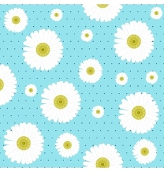 Chamomile seamless pattern vector