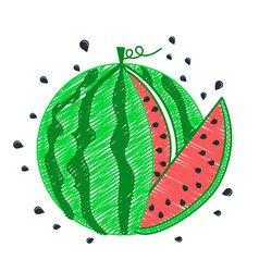 Drawing watermelon icon piece vector