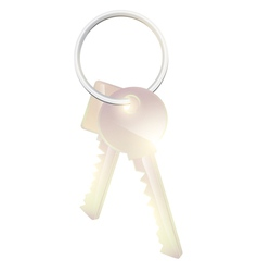 Two metal keys vector