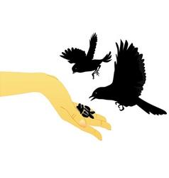 bird feeding vector image vector image