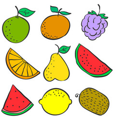Collection stock of fruit colorful various doodles vector