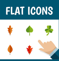 Flat icon maple set of linden hickory frond and vector