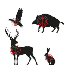targets with black silhouettes of animals vector image