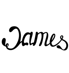 James name lettering vector image