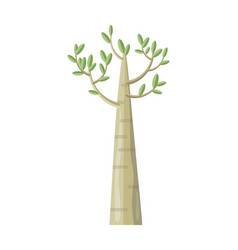 poplar tree with green leaves vector image