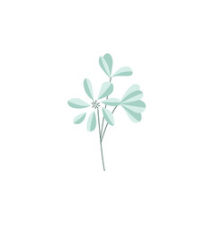 flat abstract flower icon vector image