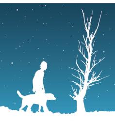 winter night vector image