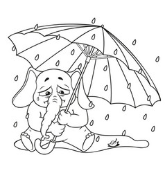 Elephant crying under an umbrella autumn rain vector