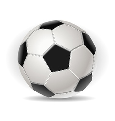 Soccer ball isolated on withe vector image
